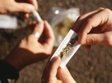 Strenge regels voor cannabiswinkels in Izegem